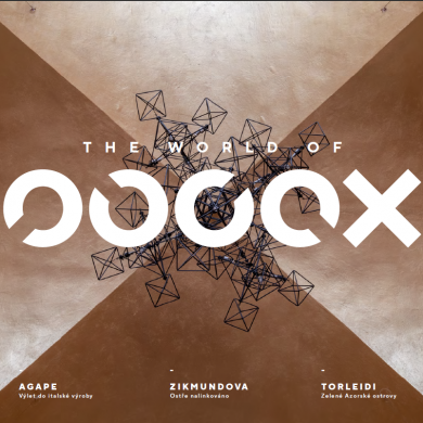 world of oooox archizoom